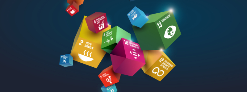 Coverbeeld Sdgs Def Dossier