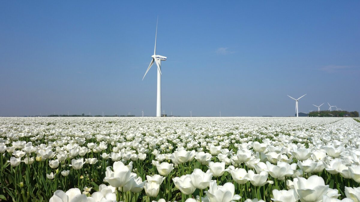 Jan De Nul Commits To Reduce Co2 Emissions